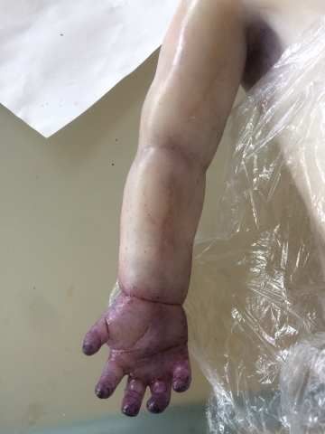 Arm silicone cast painting oil paint