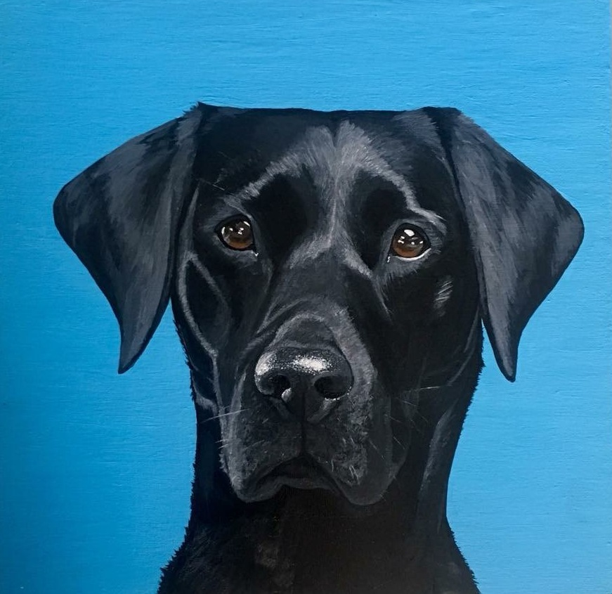black labrador acrylic painting portrait private commission artwork
