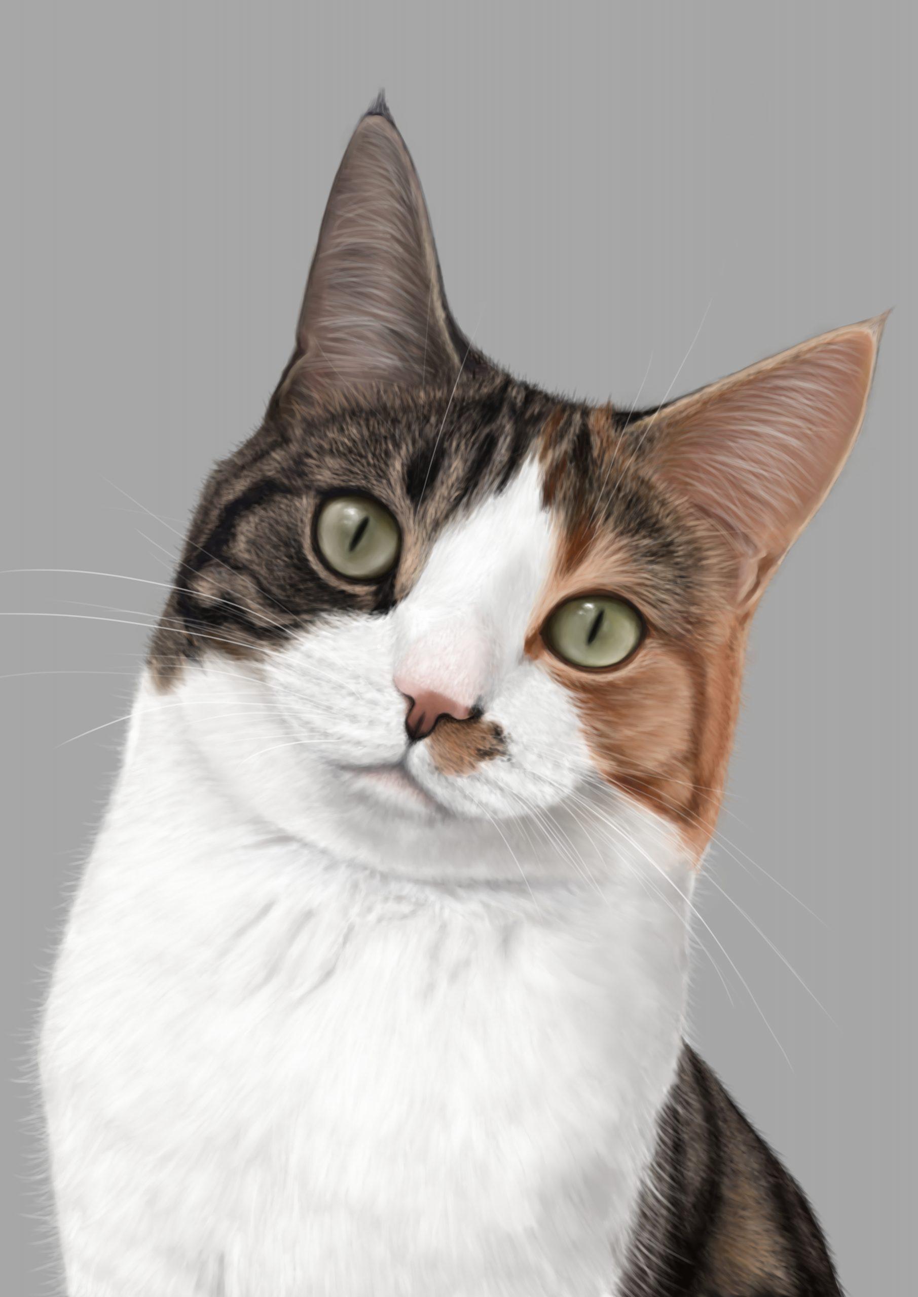 Cat digital artwork painting display tablet portrait